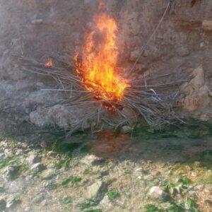 photo 2021 02 01 09 24 17 300x300 - زباله های رها شده گردشگران در آسیاب تاریخی روستای گنو
